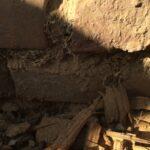 Hausschwamm - Myzel im Mauerwerk